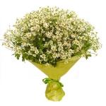 Букет цветов 49