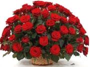 Букет цветов 50